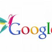 Google Hummingbird - Google Colibri